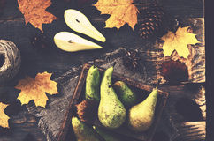 Fall decoration with yellow pears in rustic crate Royalty Free Stock Photo