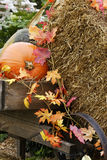Fall Decorations. With Pumpkins, leaves, hay and a wheelbarrrow royalty free stock photo