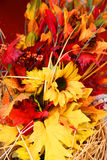 Fall decorations Stock Image