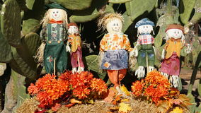 Fall decorations by cactus Royalty Free Stock Photography