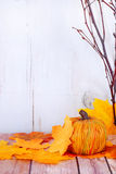 Fall decorations Royalty Free Stock Images