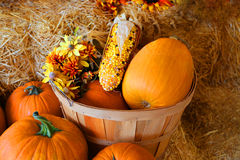 Fall decorations Stock Images
