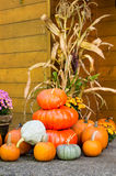 Fall decorations of pumpkins Stock Photography