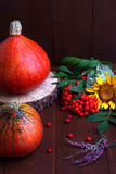 Fall decorations of pumpkins Stock Image