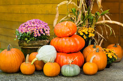 Fall decorations of pumpkins and flowers stock photos