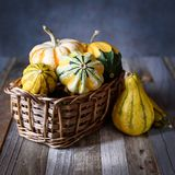 Fall decorative gourds and pumpkins in a basket on natural rustic wooden background Stock Photos