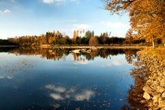 Fall in dem Teich Stockfotos