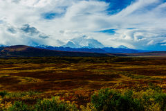 Fall of Denali National Park Royalty Free Stock Photo