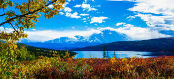 Fall of Denali National Park. Gorgeous Stock Photos