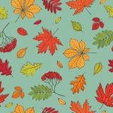 Fall der Blätter Hintergrund mit Hand gezeichneten Blättern Nahtloses Muster für Gewebe, Tapeten, Geschenkverpackung und Einklebe Lizenzfreies Stockbild