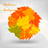 Fall design Royalty Free Stock Image