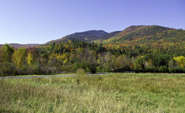 Fall in die Adirondack Berge Stockbilder