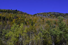Fall in die Adirondack Berge Lizenzfreies Stockfoto