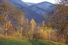Fall in die Karpaten Lizenzfreie Stockfotografie
