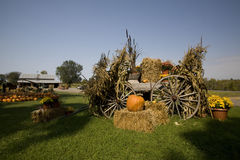 Fall Display. A well assembled decorative display at a farm selling pumpkins, mums and other fall goodies Royalty Free Stock Image