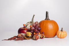 Fall Display Royalty Free Stock Images