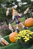Fall Display Stock Image