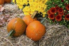 Fall display. A fall display consisting of pumpkins, hay bales, and mums Stock Photo