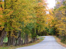Fall drive Stock Photography