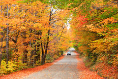 Fall drive Stock Images
