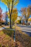 Fall, Edmonton (64 Allee), ALbeta stockbilder