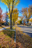 Fall, Edmonton (64 Avenue) , ALbeta Stock Images