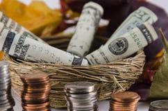 Fall-Einsparungen Lizenzfreies Stockbild
