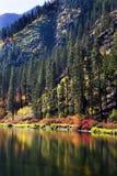Fall färbt Wenatchee Fluss-Reflexionen Stockfoto
