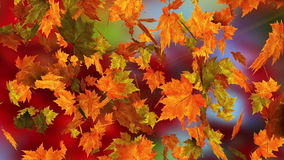 Fall fantasy stock footage