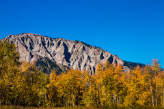Fall-Farbe in Butte mit Haube Colorado lizenzfreie stockbilder