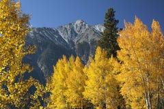 Fall-Farbe-felsige Berge Stockfoto