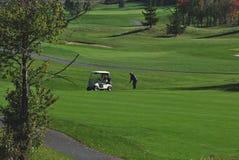 Fall-Farben auf einem Golfplatz Stockbilder