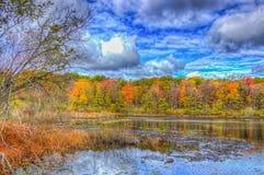 Fall-Farben auf Spettigue-Teich lizenzfreie stockbilder