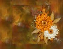 Fall-Farben-Blumenhintergrund Stockfotos
