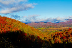 Fall-Farben in Brevard, NC stockfotografie