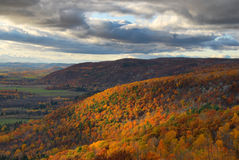 Fall-Farben in den Hügeln Lizenzfreie Stockbilder