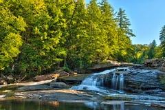 Fall-Farben an der Schwalbe fällt in Schwalben-Nebenfluss-Nationalpark, Maryland Stockbilder