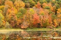 Fall-Farben nachgedacht über einen See Lizenzfreie Stockbilder