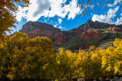 Fall-Farben Sedona Arizona USA stockfoto
