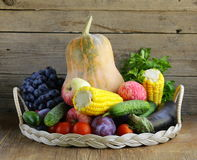 Fall farm harvest. Pumpkins, corn, apples, cucumbers, tomatoes Stock Photography
