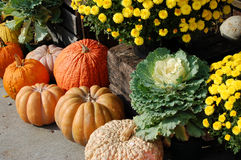 Fall Farm Market with Pumpkins Stock Image
