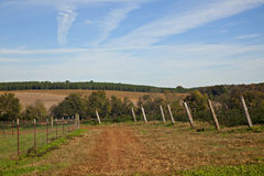 Fall Farm and sky. Beautiful Autumn farm with blue sky full of jet trails Royalty Free Stock Image