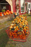 Fall farm stand. With gourds , Bennington, Vermont Stock Photos