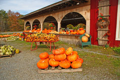 Fall farm stand. With pumpkins, Bennington, Vermont Royalty Free Stock Photography