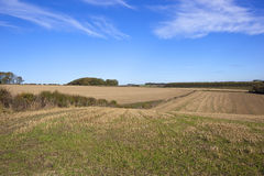 Fall farmland Stock Images