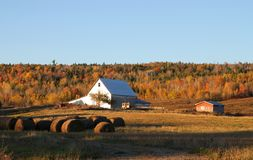 Fall farmland. Rural farmland with silver barn and hay bales with an autumn scenic background in New Brunswick, Canada Stock Photos