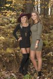 Two beautiful female friends pose in dresses in autumn woods - fashion. Fall fashion - town stunning young women pose in dresses in the autumn woods stock images