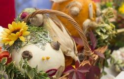Fall festivities Stock Image