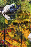 Fall-Feuer-orange rote Farbreflexion Wenatchee-Fluss Washington Stockfoto