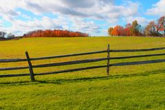 Fall Field  Stock Photography
